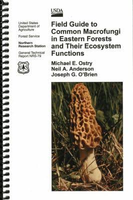 Mushroom field guide