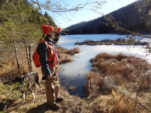 Vermont foresters can help